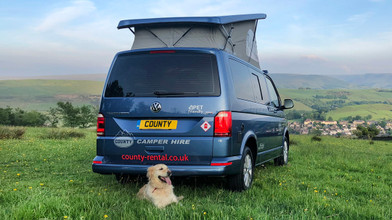VW Campervan Pet Friendly